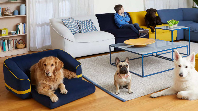Kids & Pets | Divani&Divani by Natuzzi